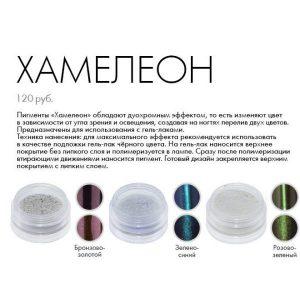 chameleon-600x600